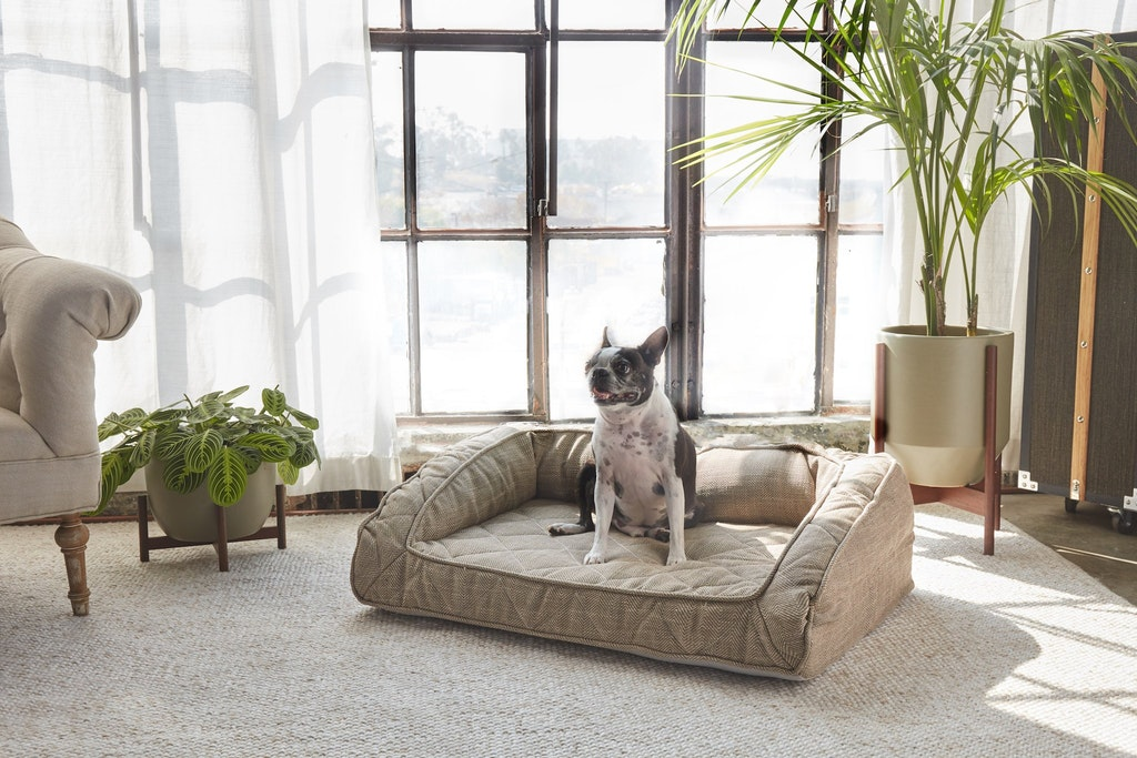 cozy cabin modern dog bed