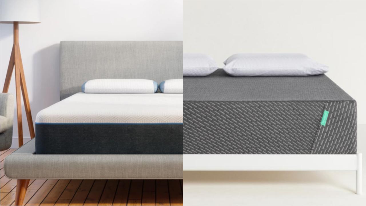 bear pro vs tuft and needle mint mattress