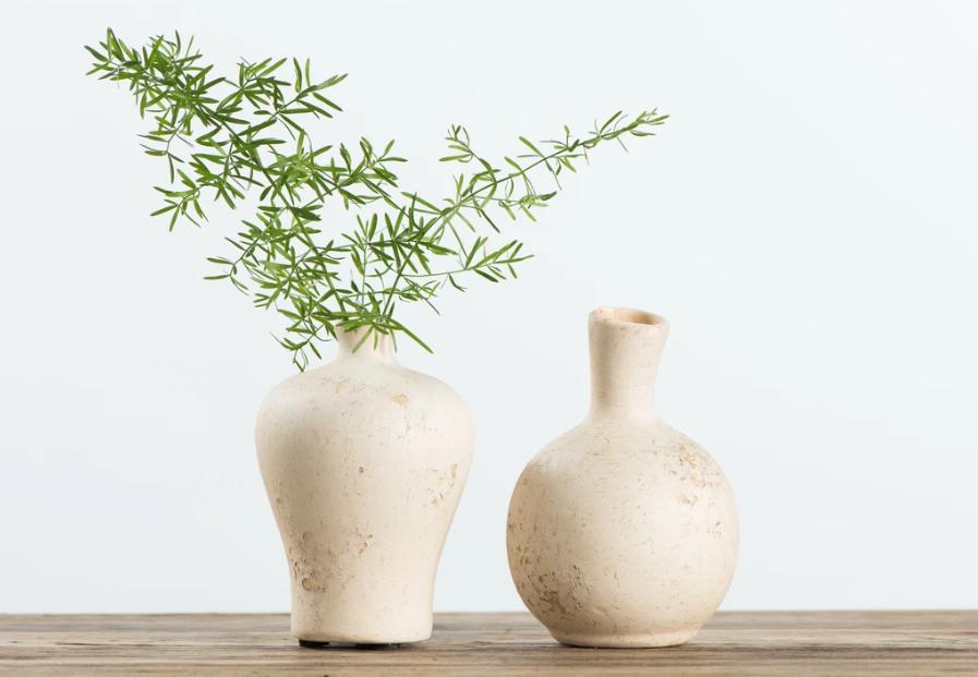 ceramic pots greenery house plants