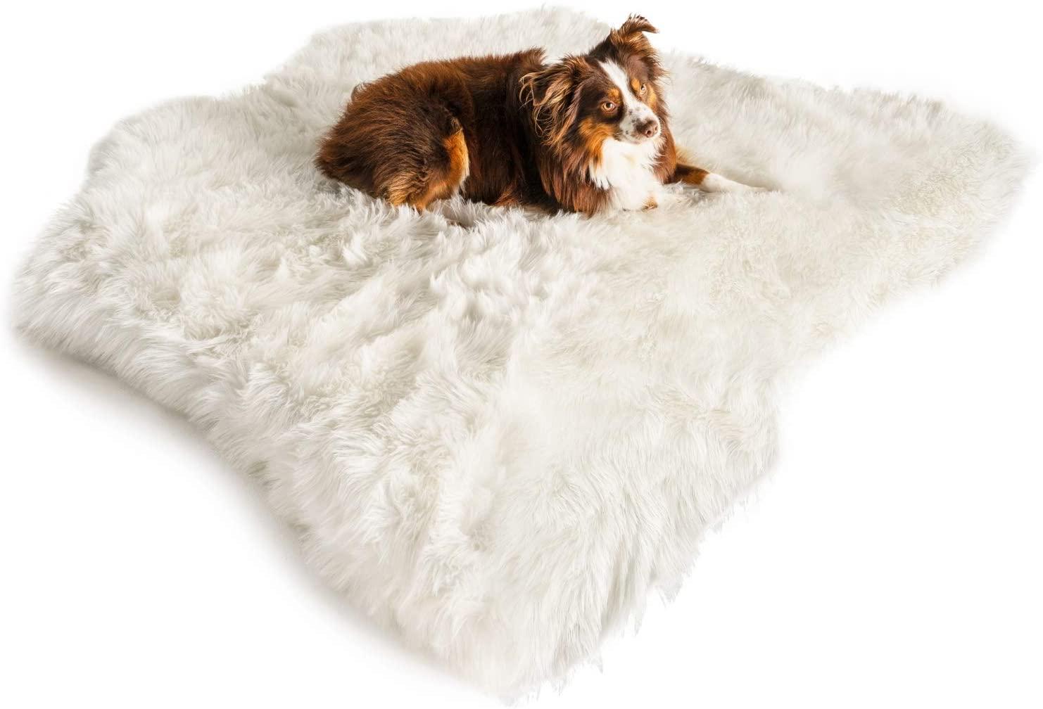 stylish rug style pet bed