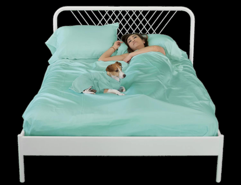 sheets & Giggles bedding