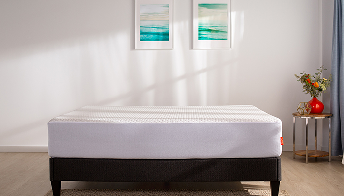top mattress protectors from layla