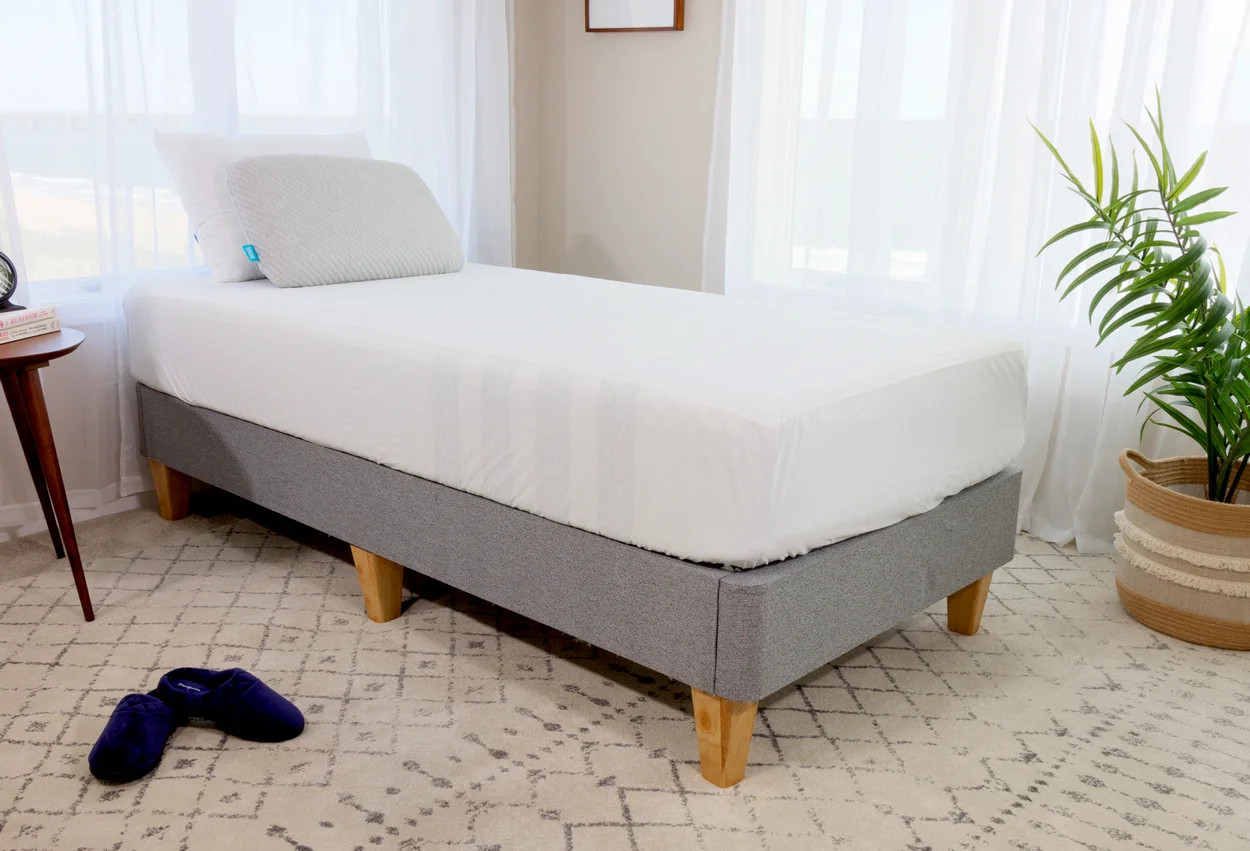 the mattress protector by leesa