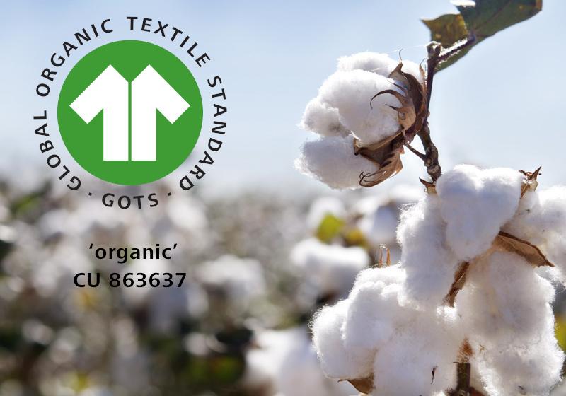 organic cotton waterproof mattress protector
