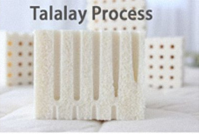 talalay process difference dunlop latex
