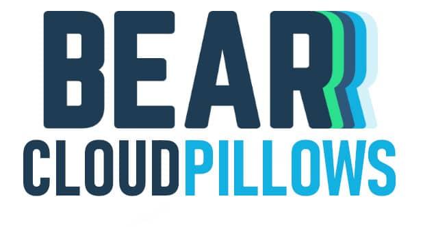 bear cloud pillow logo