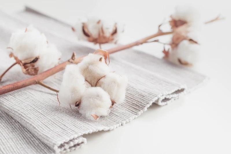 100% gots certified organic cotton sheet review