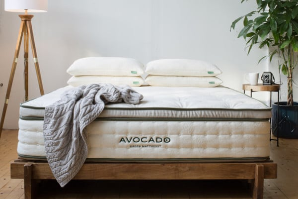 avocado mattress coupon