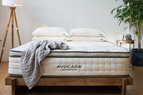 avocado mattress coupon