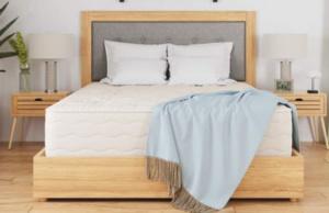 joybed lxp mattress review