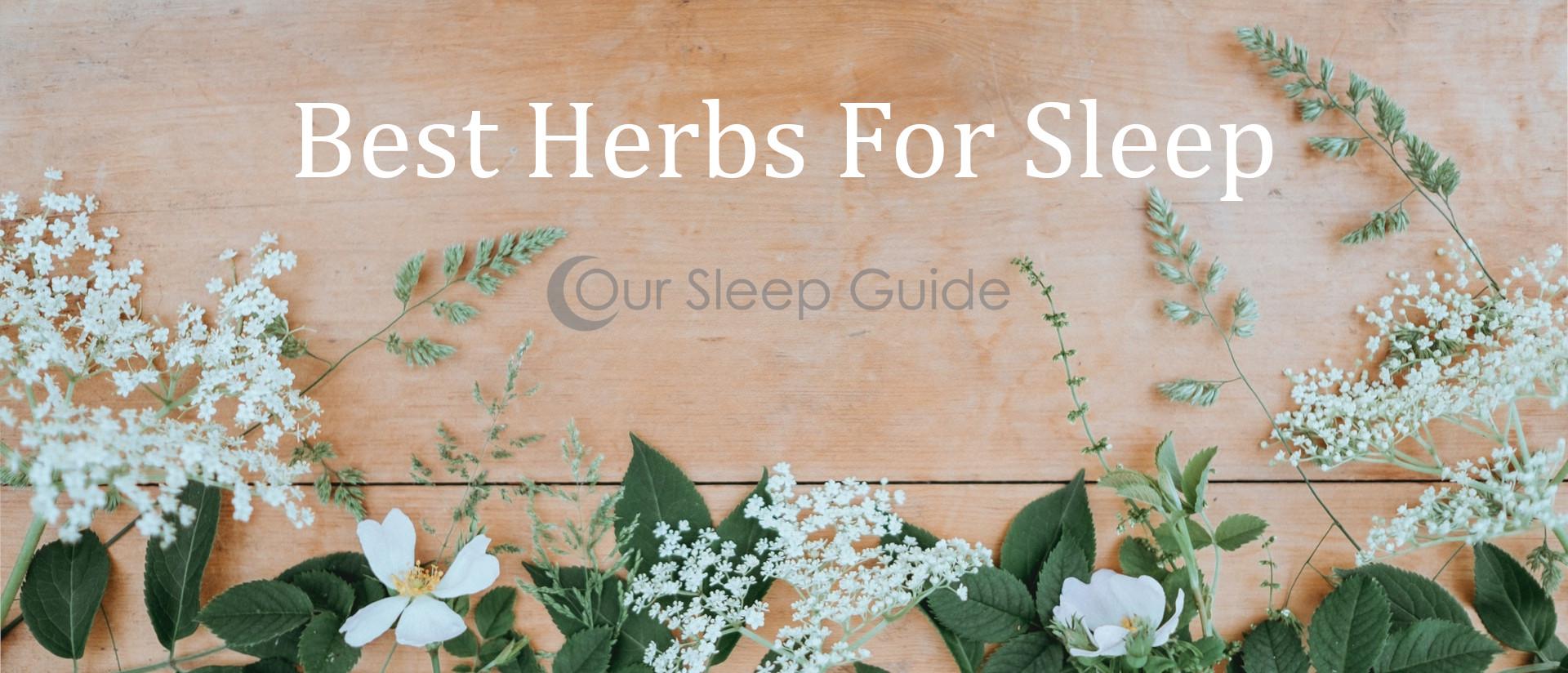 top herbs for sleep