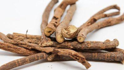 herbal teas great for sleep