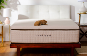 real bed mattress charles p rogers