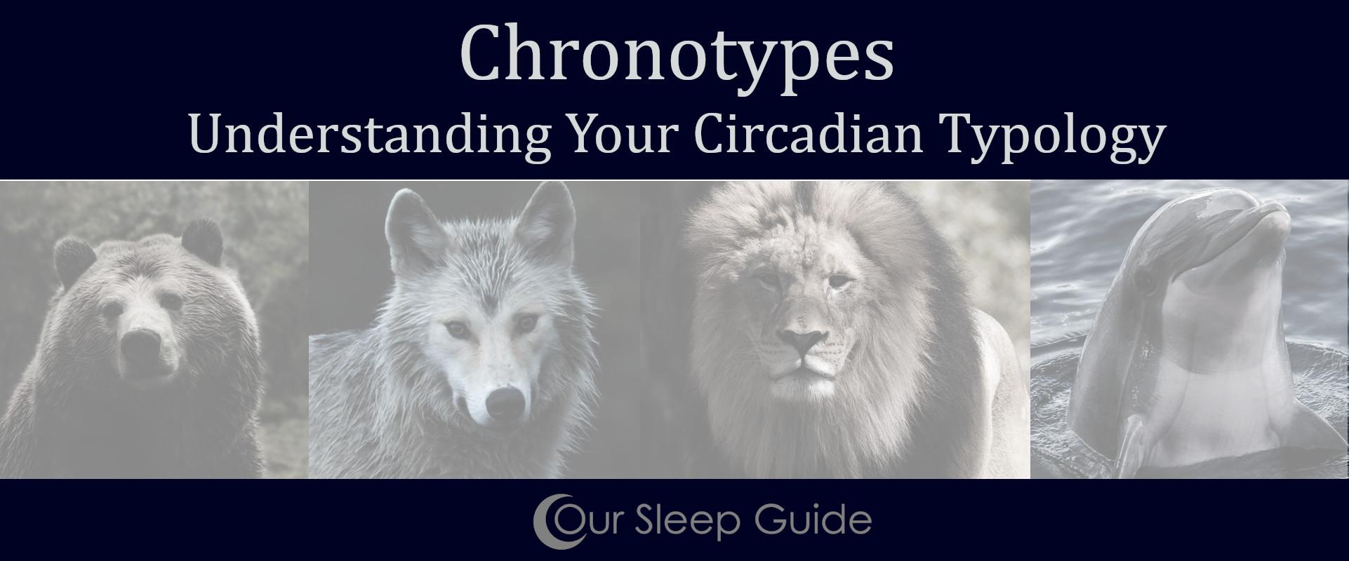 chronotype understanding your circadian typology