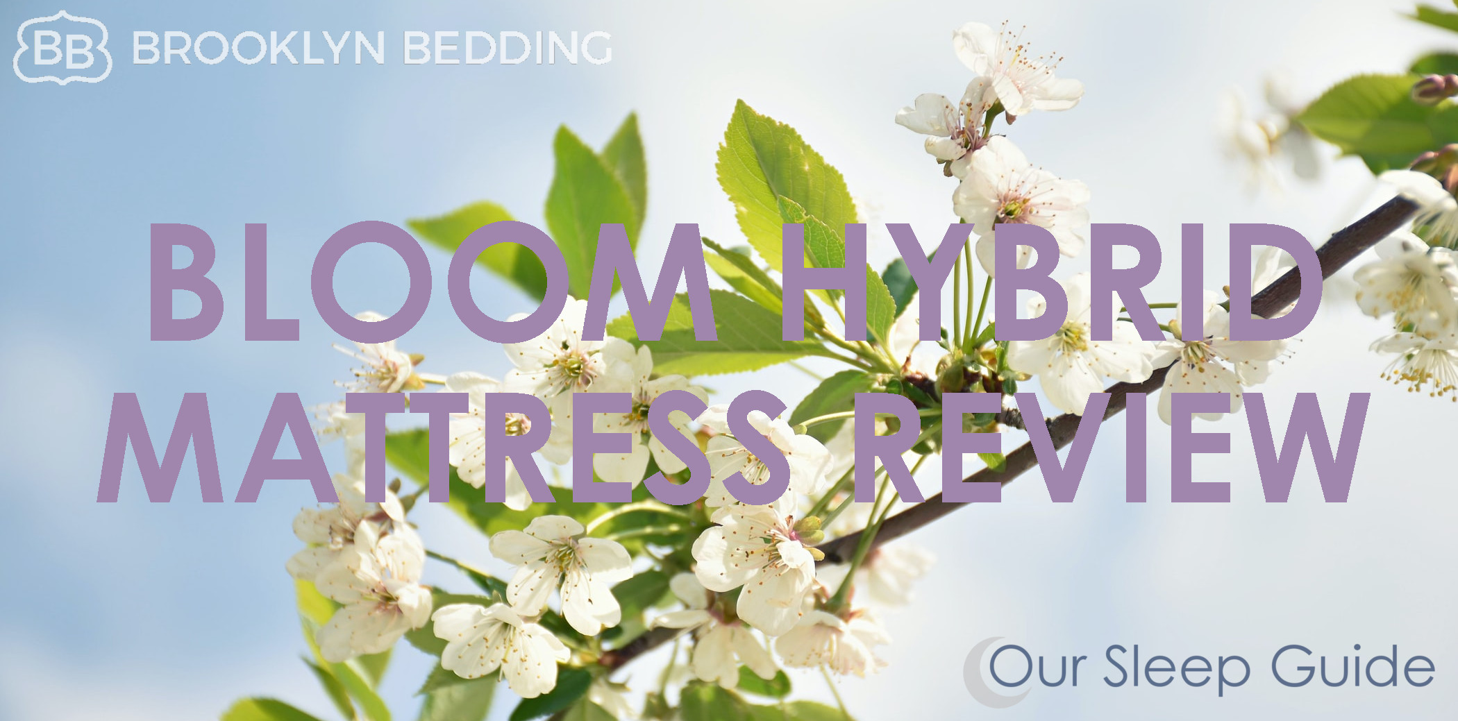 best brooklyn bedding bloom mattress review