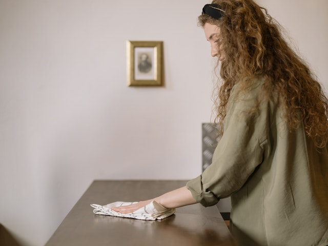 wipe off all of your surfaces including bedframe
