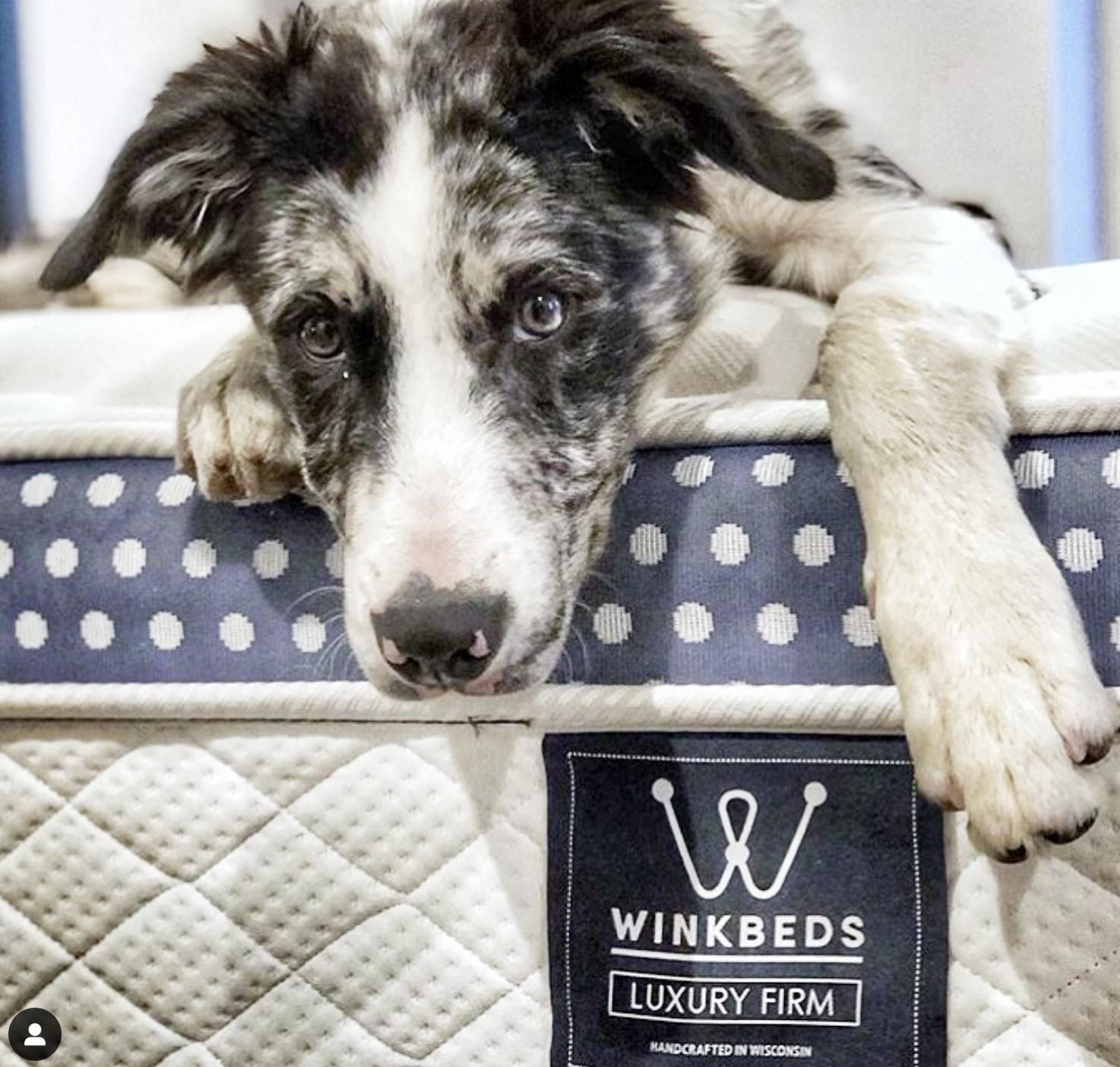 winkbed luxury firm mattress