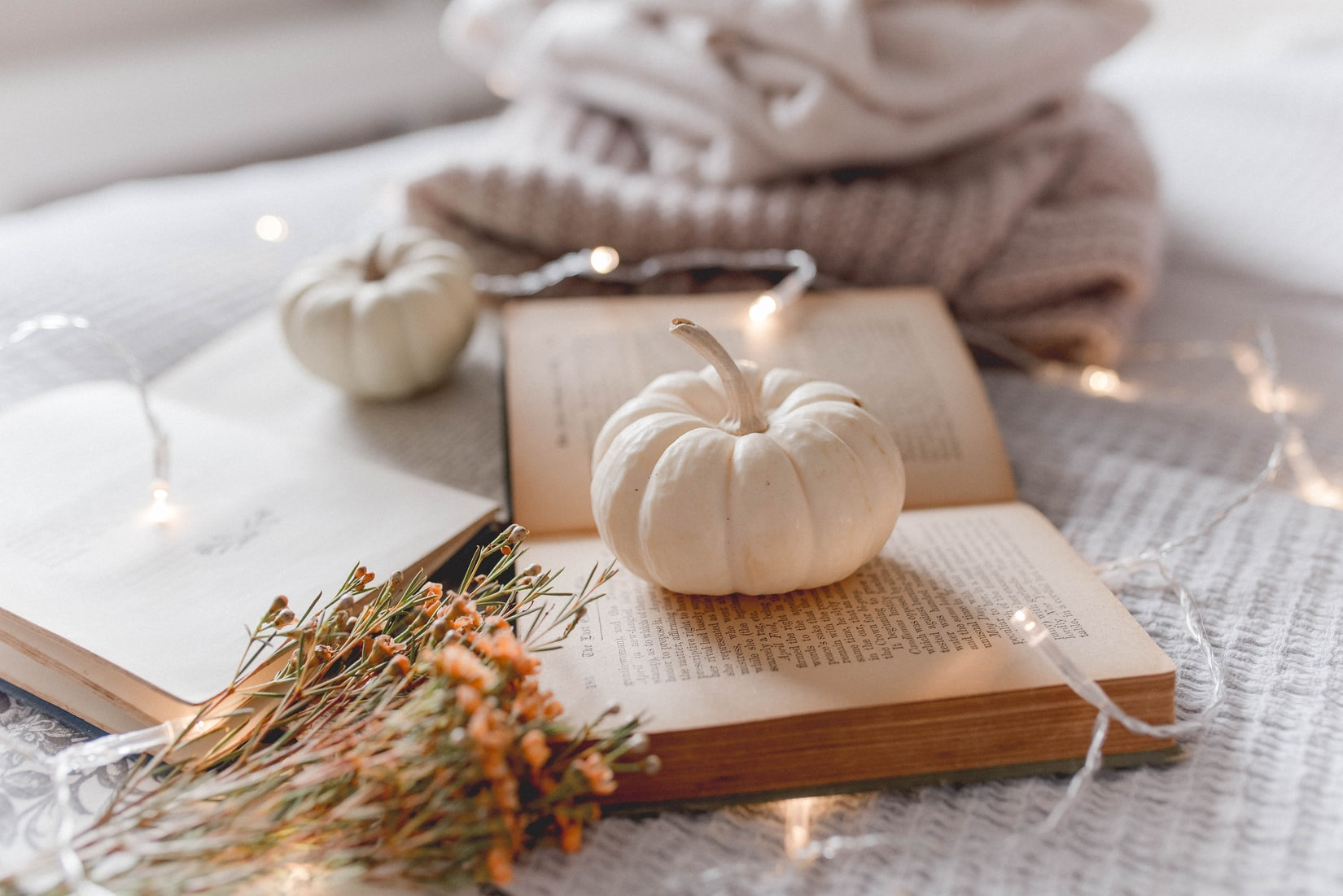 fall favorites our sleep guide